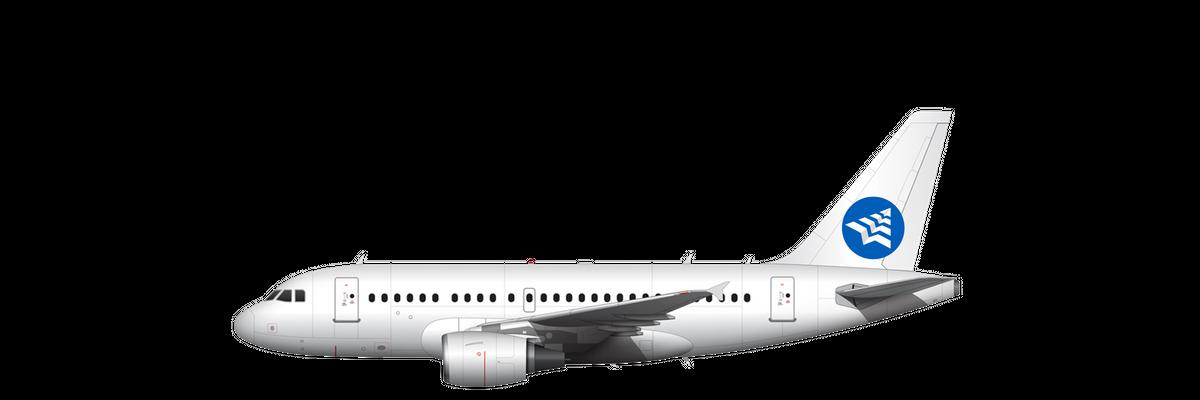 Airbus ACJ 318